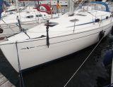 Bavaria 37 Cruiser Bavaria 37-3, Sejl Yacht Bavaria 37 Cruiser Bavaria 37-3 til salg af  Sailing World Lemmer NL / Heiligenhafen (D)