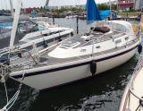 Westerly Fulmar 32 Fulmar 32, Segelyacht Westerly Fulmar 32 Fulmar 32 Zu verkaufen durch Sailing World Lemmer NL / Heiligenhafen (D)