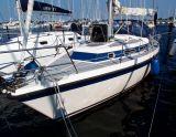Compromis 999 Compromis 999, Voilier Compromis 999 Compromis 999 à vendre par Sailing World Lemmer NL / Heiligenhafen (D)