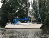 Bavaria 390 Lagoon Bavaria 390 Lagoon, Segelyacht Bavaria 390 Lagoon Bavaria 390 Lagoon Zu verkaufen durch Sailing World Lemmer NL / Heiligenhafen (D)