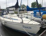 Bavaria 30 PLUS, Segelyacht Bavaria 30 PLUS Zu verkaufen durch Sailing World Lemmer NL / Heiligenhafen (D)