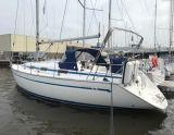 Bavaria 37-2 Bavaria 37-2, Barca a vela Bavaria 37-2 Bavaria 37-2 in vendita da Sailing World Lemmer NL / Heiligenhafen (D)