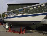 Hallberg-Rassy 312, Segelyacht Hallberg-Rassy 312 Zu verkaufen durch Sailing World Lemmer NL / Heiligenhafen (D)