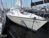 Dehler 38, Sejl Yacht Dehler 38 til salg af  European Yachting Network