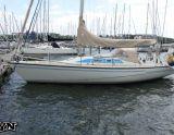 Dehler 34, Zeiljacht Dehler 34 hirdető:  European Yachting Network