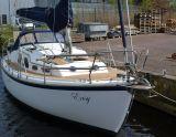 Midget 31, Sailing Yacht Midget 31 for sale by Serry, Jachtwerf & Jachtmakelaardij