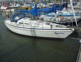 Contest 30 MK3, Sejl Yacht Contest 30 MK3 til salg af  Bootverkopers.nl