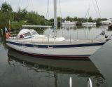 Hallberg Rassy 312, Sailing Yacht Hallberg Rassy 312 for sale by Bootverkopers.nl