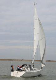 Gib Sea 302