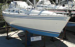 Scanner 391 (VERKOCHT), Zeiljacht Scanner 391 (VERKOCHT) te koop bij Jachtmakelaardij Lodewijk Bos
