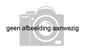 Wester Engh Golden Horn 6.85, Sloep Wester Engh Golden Horn 6.85 te koop bij Jachtmakelaardij Lodewijk Bos