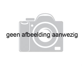 Witte Eend Lemsteraak Roefaak, Plat- en rondbodem, ex-beroeps zeilend for sale by Chris Beuker Maritiem