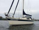 Elan 43, Парусная яхта Elan 43 для продажи Holland Marine Service HMS