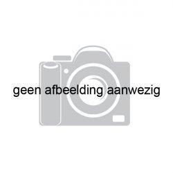 Scheepsmakelaardij Goliath Den Bosch