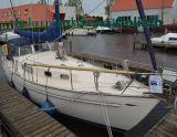 Hallberg Rassy 35, Classic yacht Hallberg Rassy 35 for sale by Scheepsmakelaardij Goliath