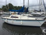 Kelt 760, Segelyacht Kelt 760 Zu verkaufen durch Saleboot BV