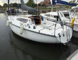 Kelt 800, Zeiljacht Kelt 800 hirdető:  Saleboot BV