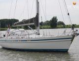 Contest 37, Sejl Yacht CONTEST 37 til salg af  De Valk Monnickendam