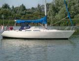Sigma 36, Segelyacht Sigma 36 Zu verkaufen durch Tornado Sailing Makkum