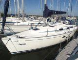 Bavaria 33 Cruiser, Segelyacht Bavaria 33 Cruiser Zu verkaufen durch White Whale Yachtbrokers