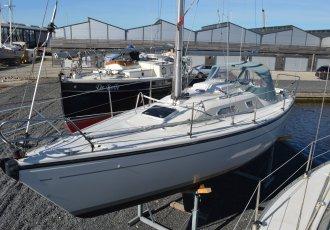 Dehler 28S, Zeiljacht Dehler 28S te koop bij White Whale Yachtbrokers