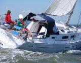 Hanse 315, Zeiljacht Hanse 315 hirdető:  White Whale Yachtbrokers