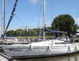 Jeanneau Sunrise 34, Segelyacht Jeanneau Sunrise 34 Zu verkaufen durch White Whale Yachtbrokers