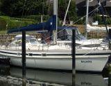 Contest 36S, Парусная яхта Contest 36S для продажи White Whale Yachtbrokers