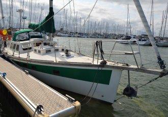 Haliotis 38, Zeiljacht Haliotis 38 te koop bij White Whale Yachtbrokers - Belgium