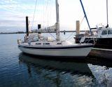 Hallberg-Rassy 31, Sejl Yacht Hallberg-Rassy 31 til salg af  White Whale Yachtbrokers
