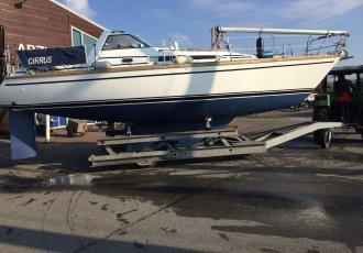Van De Stadt 34, Zeiljacht Van De Stadt 34 te koop bij White Whale Yachtbrokers - Enkhuizen