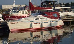 Delphia 29, Sailing Yacht  for sale by Skipshandel Stavoren