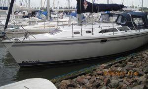 Catalina 320, Sailing Yacht  for sale by Skipshandel Stavoren