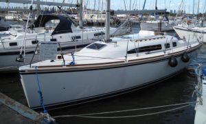 Symphonie 312, Sailing Yacht  for sale by Skipshandel Stavoren