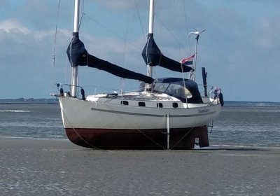 Freedom 35 Cat Ketch, Zeiljacht Freedom 35 Cat Ketch te koop bij Wehmeyer Yacht Brokers