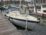 Hurley 800, Zeiljacht Hurley 800 hirdető:  Schepenkring Friesland