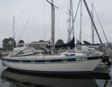 Hallberg Rasssy 38, Sailing Yacht Hallberg Rasssy 38 for sale by Schepenkring Delta Marina Kortgene