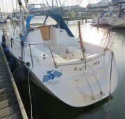 Gib Sea 304