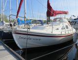 Midget 26, Sejl Yacht Midget 26 til salg af  Schepenkring Delta Marina Kortgene