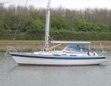 Hallberg Rassy 36, Barca a vela Hallberg Rassy 36 in vendita da Jachtmakelaardij Kappers