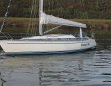 Dynamic 37, Segelyacht Dynamic 37 Zu verkaufen durch Jachtmakelaardij Kappers