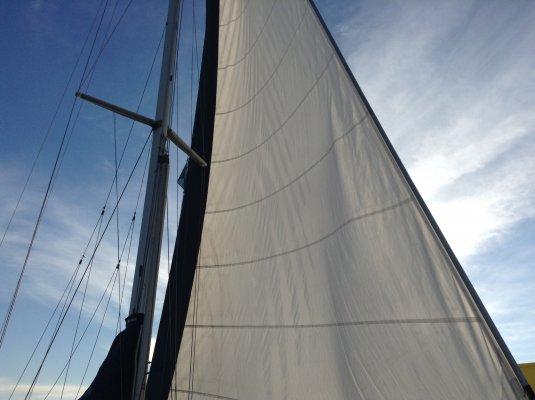 mast prop 100