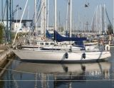 Standfast 33, Парусная яхта Standfast 33 для продажи Jachtmakelaardij Lemmer Nautic
