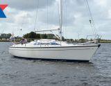 Dehler 31, Sejl Yacht Dehler 31 til salg af  Kempers Watersport