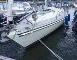 Scanner 391, Парусная яхта Scanner 391 для продажи Nautic World