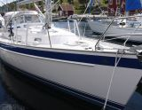 Hallberg Rassy 37, Sejl Yacht Hallberg Rassy 37 til salg af  YachtFull