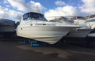 Cruisers 3075 Roque Diesel