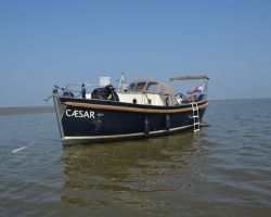 Seafury 900Cabin, Tender Seafury 900Cabin for sale at Seafury