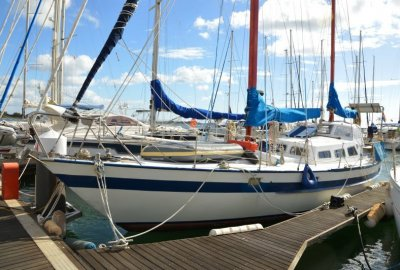 Volkerak 40, Zeiljacht  for sale by eSailing