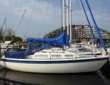 Hurley 800, Zeiljacht Hurley 800 hirdető:  Zuiderzee Jachtmakelaars